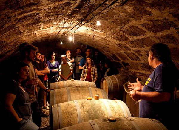 Festa del 15é aniversari de la Cervesaria «Ales Agullons»